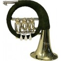 Fuerst Pless Horns
