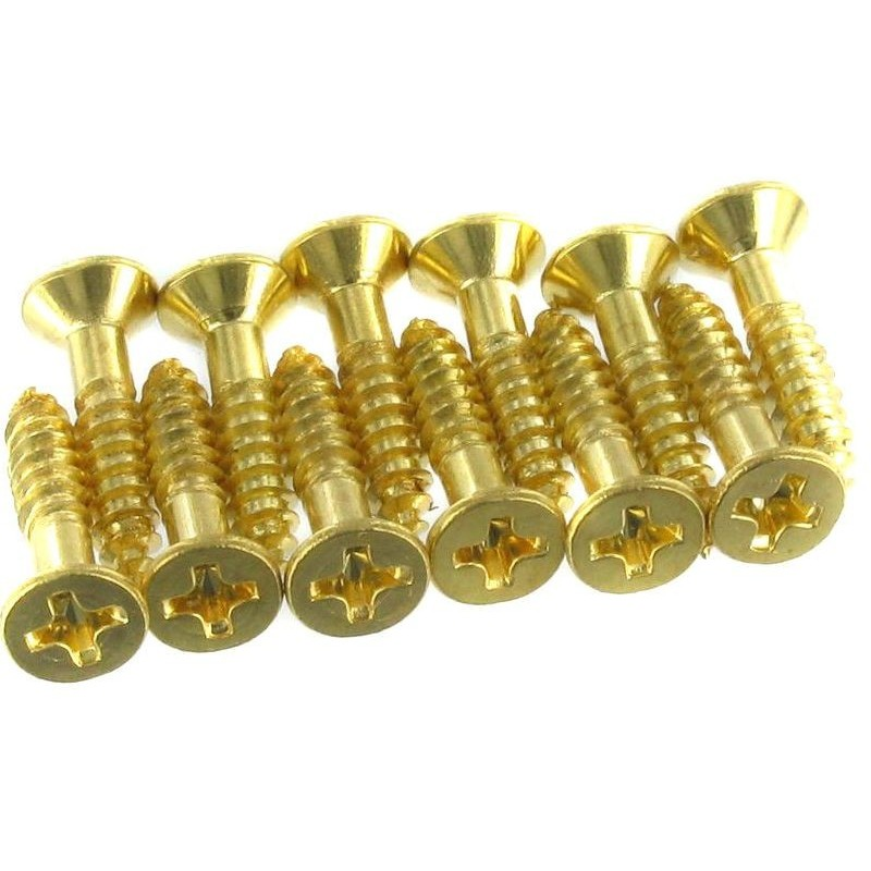 Harley Benton Parts Pickguard Screws Gold