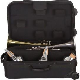 Huse si Cutii pentru Trompeta